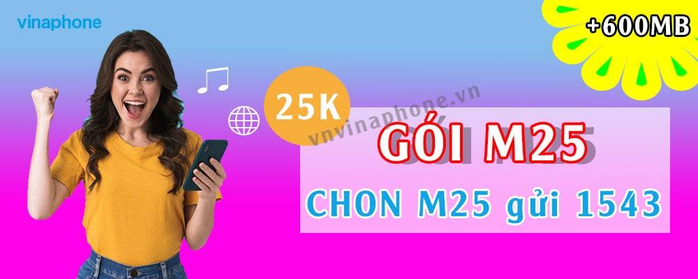 Đăng Ký M25 Vinaphone: Truy Cập Internet 30 Ngày Siêu Rẻ